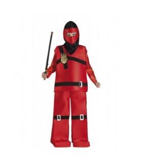 Αποκριάτικη στολή για αγόρια Game Ninja